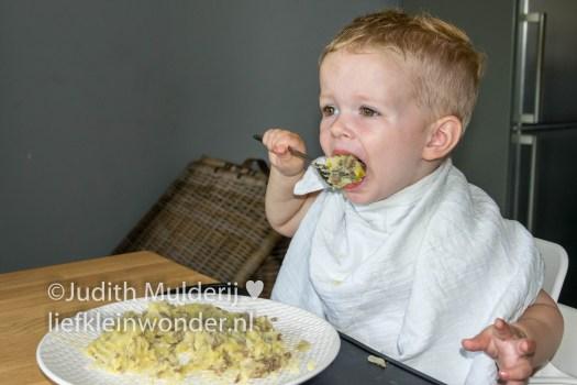 Jayden 18 maanden en 1 week oud - Aardappels met witlof en gehakt