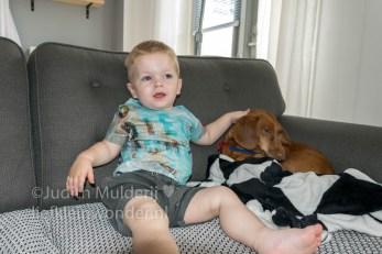 Jayden 19 maanden oud dreumes peuter - knuffelen met Franky de hond teckel op de bank