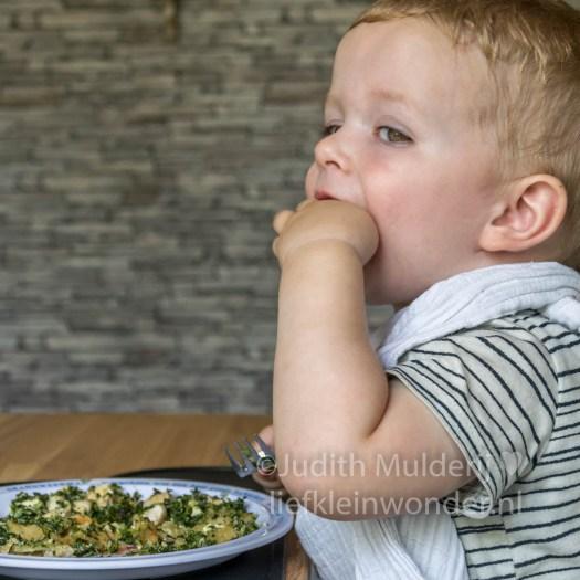 Jayden 19 maanden en 3 weken oud peuter dreumes - spinazie taart
