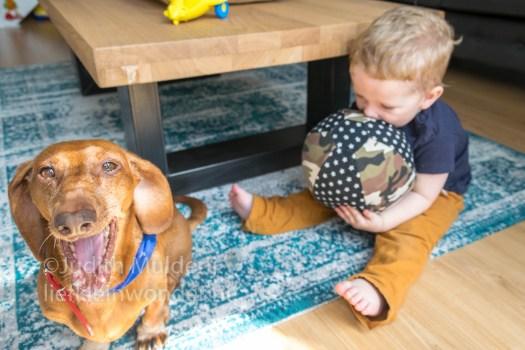 19 maanden en 1 week oud peuter dreumes - Hondje nadoen en speelgoed knuffels pakken met de mond