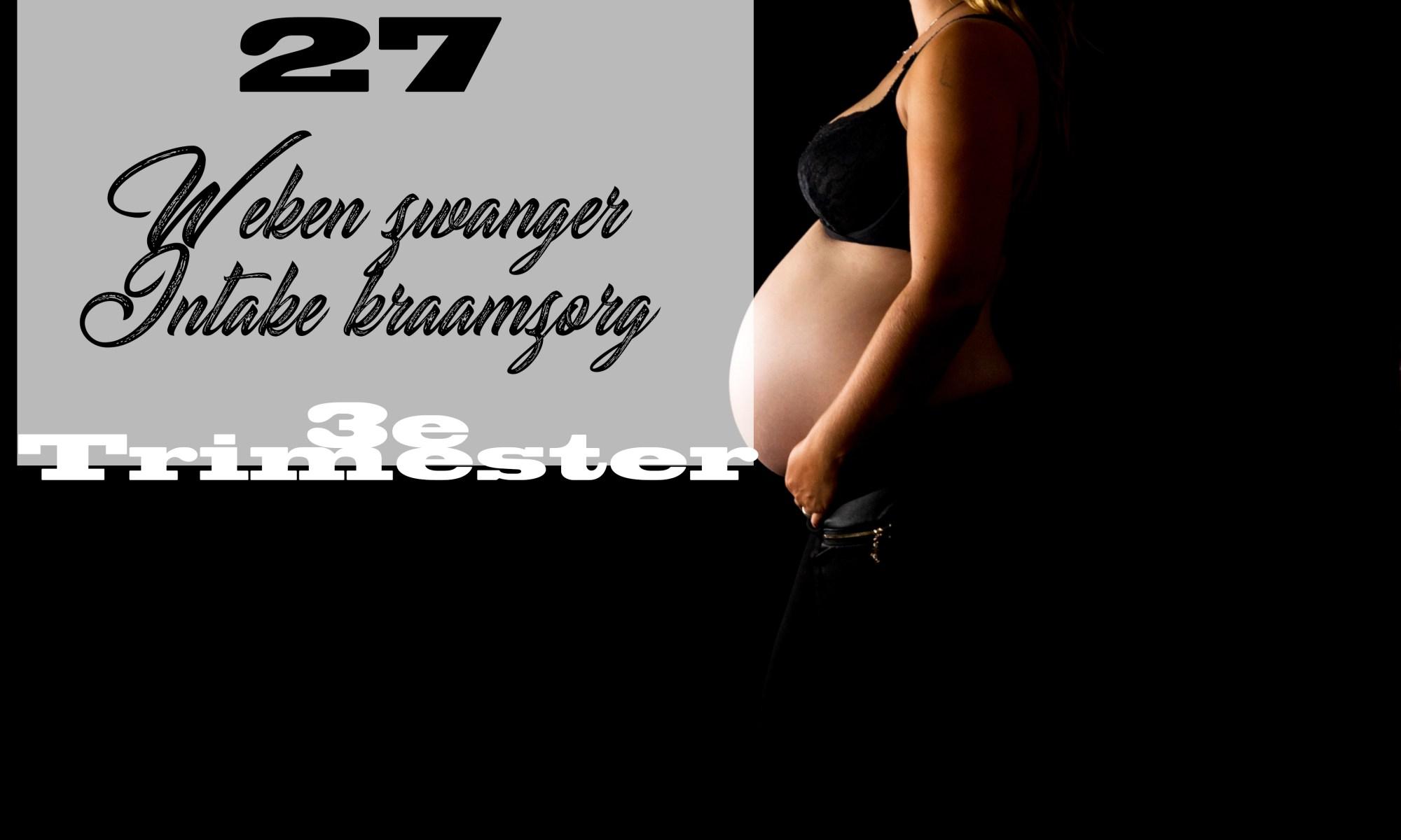 27 weken zwanger buikfoto 27 weken zwangerschap mama blog kwaaltjes intake kraamzorg 3e trimester www.liefkleinwonder.nl