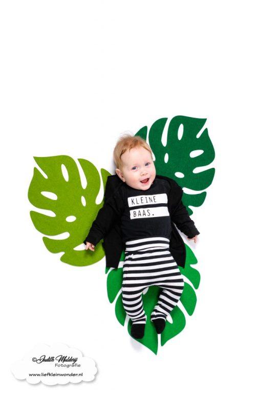 Finley 6 maanden oud ontwikkeling mama blog brandrep sizclothes baby half jaar www.liefkleinwonder.nl lachen