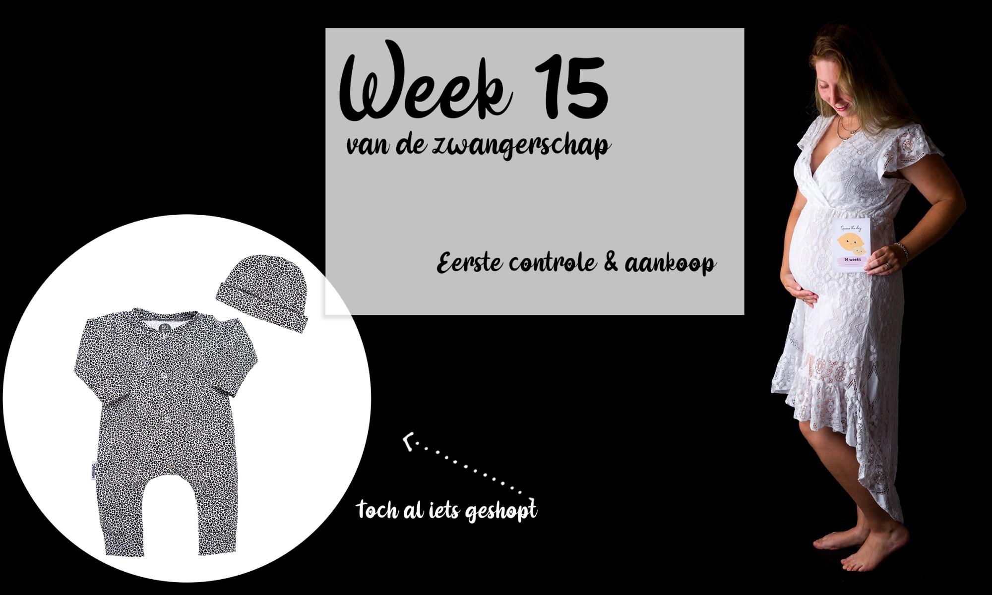 Buikfoto met 14 weken zwangerschap week 15 maand 4 3 maanden mama blog