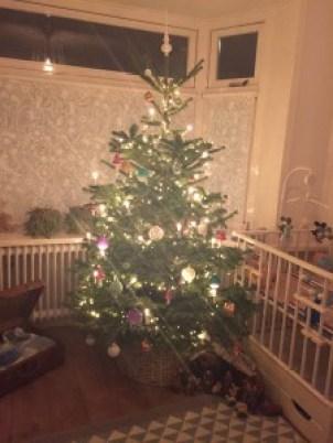 Onze boom