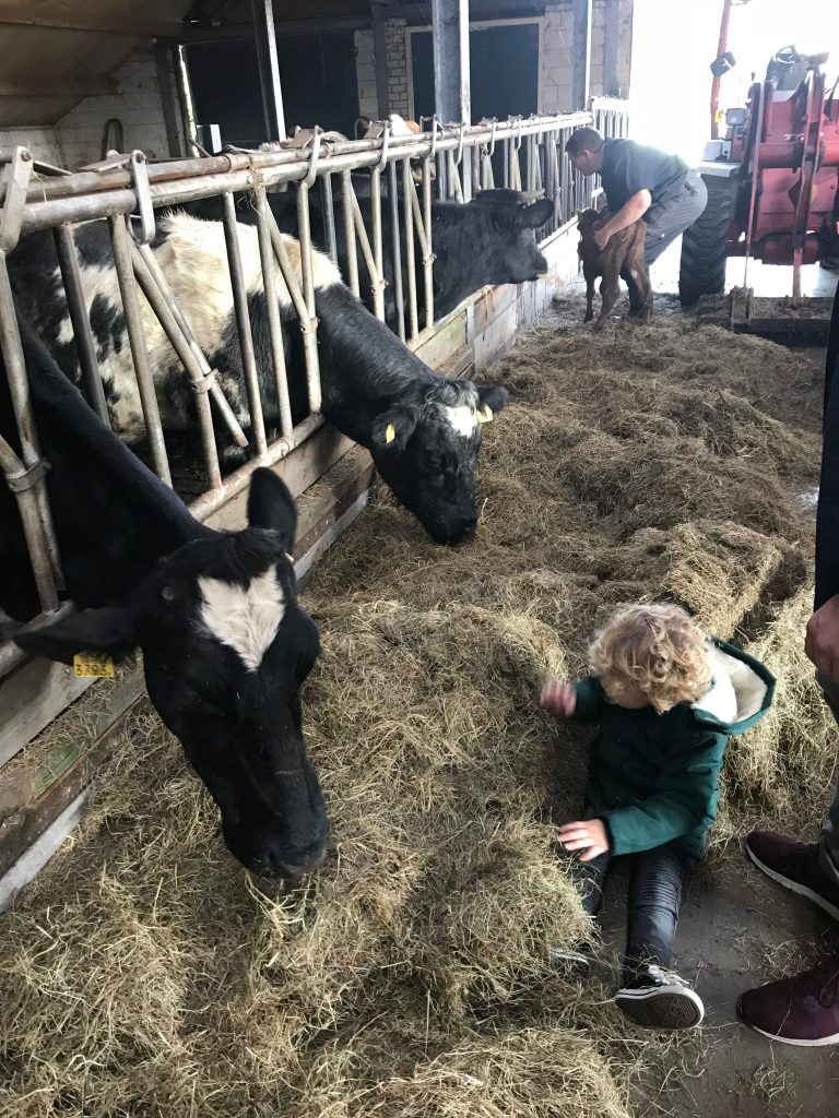 Avonturen op het agrarische kinderdagverblijf…