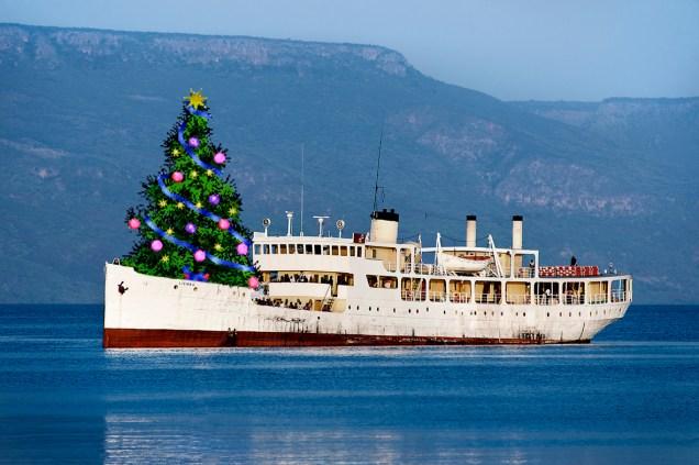 Weihnachts-Liemba, Bild: Rolf G. Wackenberg