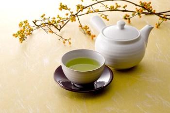 緑茶 きゅうす