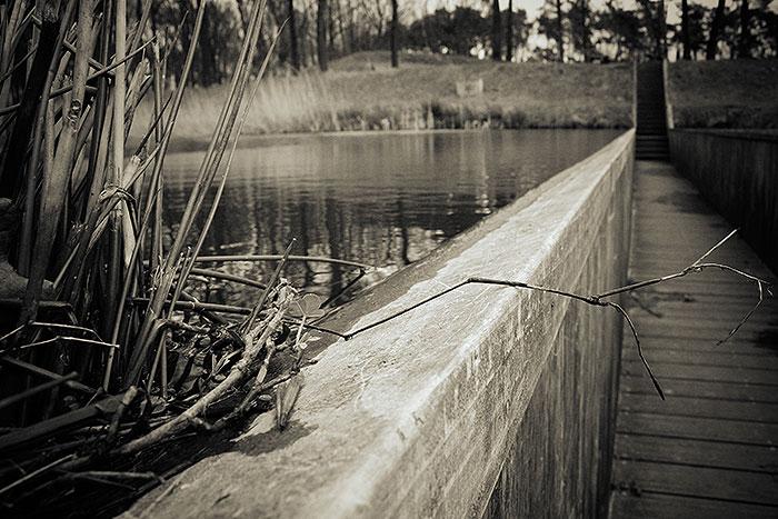 Beplanting aan de rand van de Mozesbrug