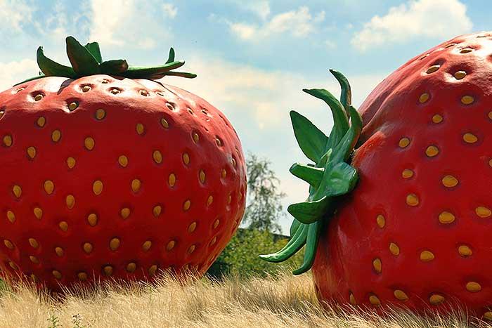 De Aardbeienrotonde bij Uden