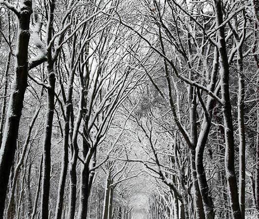 Zes woorden verhaal - sneeuw