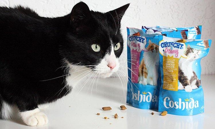 de nieuwe kattensnoepjes van Lidl