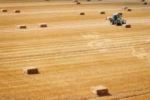 Fotoserie: Respect voor de boer