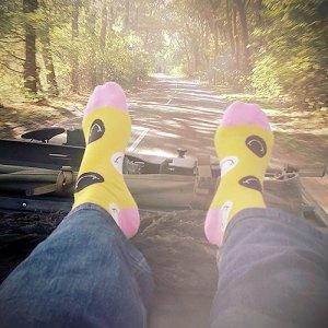 De leukste feiten over sokken