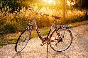 Mijn nieuwe wielen