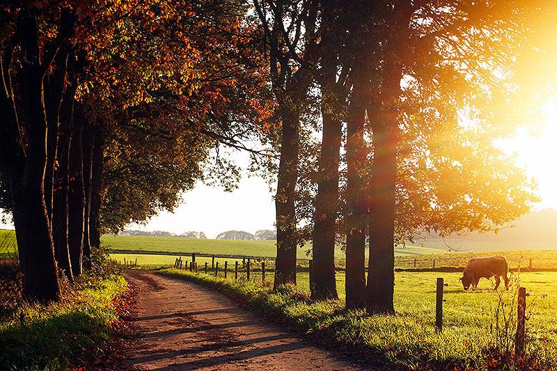 Fotoserie: Over de heuvels van Groesbeek