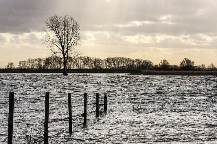 Fotoserie: Langs het hoge water