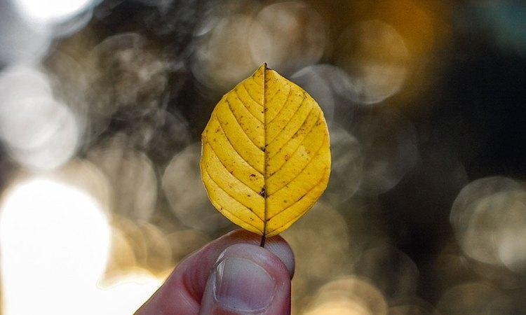 15 redenen waarom ik blij ben dat het eindelijk herfst is