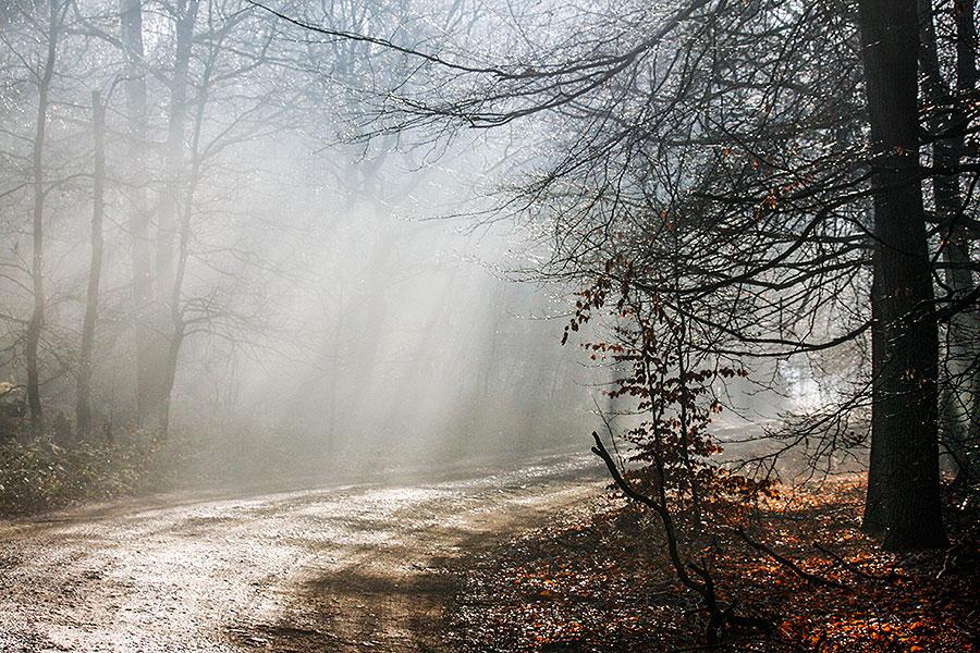 Fotoserie: De laatste zonneharp