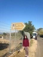 Banias..on the way to Hermon
