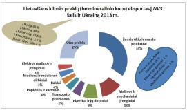 """Ekonomikos specialistės: """"Rusijos rinkos suvaržymai didžiausią poveikį turės prekybos įmonėms, o ne Lietuvos gamintojams"""""""