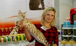 Išrinkta panašiausia katės ir šeimininkės pora