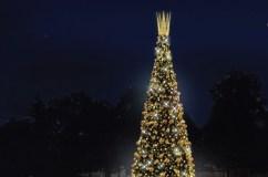 Druskininkuose bus įžiebta įspūdinga karališka Kalėdų eglė