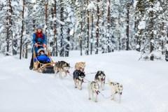 Šeimos atostogos Suomijoje: ką būtinai reikėtų išbandyti?