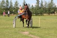 Ilgametę žirgų vadeliojimo patirtį turintis Antanas Vaškelis