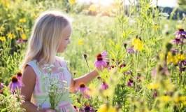 Vaiko vasara: kaip suplanuoti malonias ir prasmingas atostogas