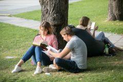Bernardinų sode įsikurs vasaros skaitykla