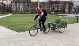 Ekologiškas pasiruošimas Kalėdoms: nuo eglučių nuomos iki pristatymo dviračiais