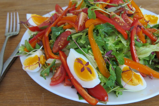 Egg, Pepper & Avocado Salad