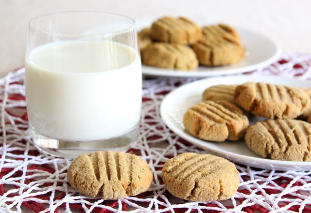 Ginger & Cinnamon Spice Coconut Cookies (gluten-free, sugar-free, dairy-free, grain-free)