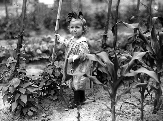 Gardening Teaches Humility and Prayer