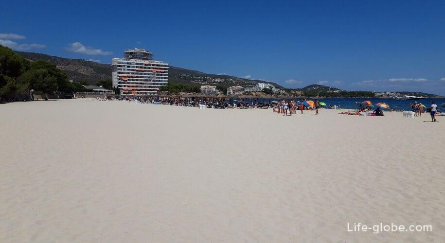 palmanova beach mallorca playa palmanova