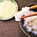 もち麦のカロリーと糖質