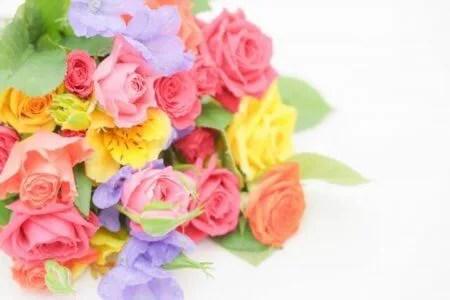 バラの花言葉 色