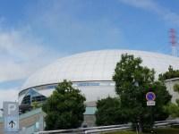 浅田真央のラストチャンス!全日本フィギュア選手権2016 順位と得点