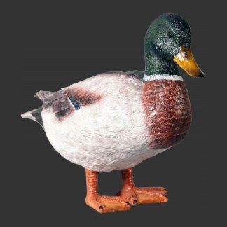 alba-shed-dinosaurs-direct-lifesize-models-life-sized-replicas-model-Mallard-Duck-Realistic-Lifesize-Model