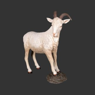 Billy Goat Cream Life Size Model