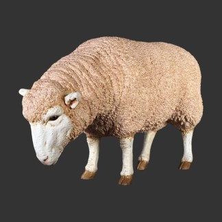 Merino Ewe Head Down Life SIze Farmyard Model