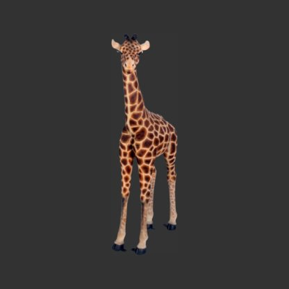 Baby Giraffe 6ft Model