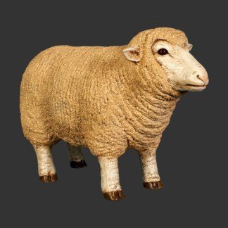 Merino Ewe Head Up Small Model