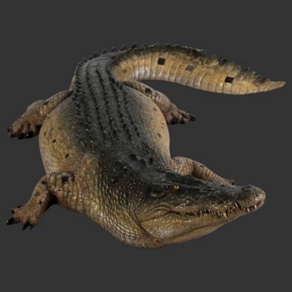 Crocodile 12ft Realistic 3D Life Size Statue