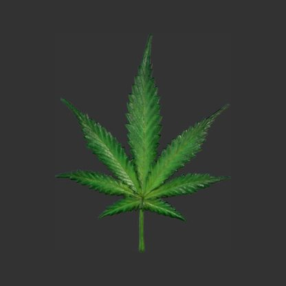 Cannabis Leaf One Metre High 3D Model