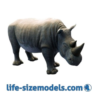 Rhinoceros Calf Model
