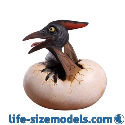 Baby Pteranodon Hatching Model