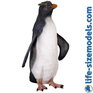 Rockhopper Penguin 3D Realistic Lifesize Model