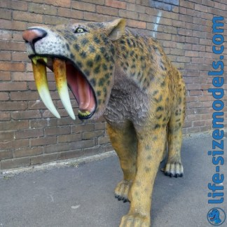 Smilodon-Sabre Tooth Cat Life Size Realistic Model
