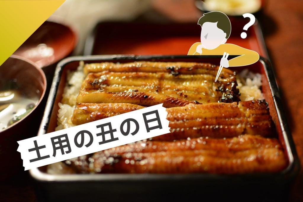 土用丑日-鰻魚-夏天
